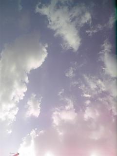 081028_144122.jpg